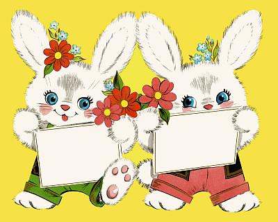 两只动物,兔子,可爱的,复活节,季节,彩色背景,图像,动物,春天