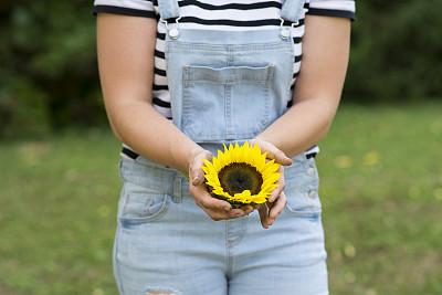 向日葵,拿着,自然美,农业,加拿大文明,蔬菜,商务,清新,无法辨认的人,食品