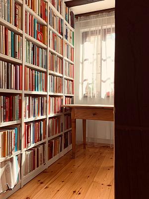 图书馆,晴朗,白昼,精装书,商务,专门技术,多样,灵感,书店,现代