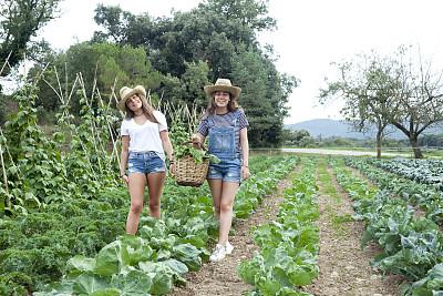 女孩,温室,乐趣,农业,农场,儿童,16岁到17岁,植物,户外,园艺
