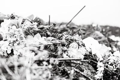 灰尘,墓地,无人,自然,黑白图片,衰老过程,波兰,小波兰省,图像,水平画幅