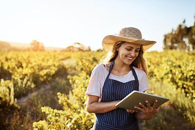 农业,移动应用程序,年龄,技术,拿着,农场,植物,户外,晴朗,园艺