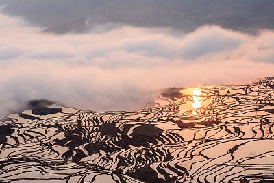 风景,云南省,农业,安静,纯净,黄昏,简单,稻田,农场,梯田