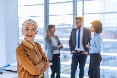 商务,机敏,七巧板,专业人员,部分,对称,策略,肖像,商业金融和工业,商务策略