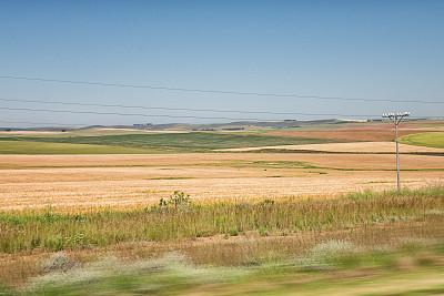 风景,南非,汽车,农业,旅途,线条,沥青,透过窗户往外看,户外,灌木丛