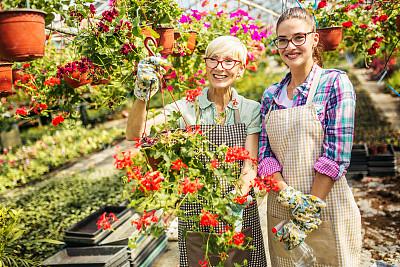 植物园,花卉商,农业,专业人员,肖像,拿着,植物,园艺,仅女人,仅一个女人