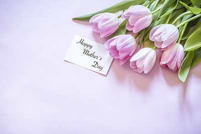 母亲节,贺卡,清新,边框,母亲,郁金香,春天,消息,节日,礼物标签