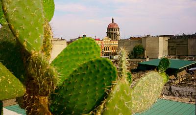 墨西哥,仙人掌,城市,照明设备,广场,巴洛克风格,现代,著名景点,殖民地式