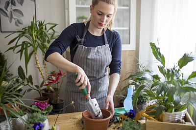 园艺,喷雾瓶,花盆,拿着,植物,木制,仅女人,仅一个女人,业余爱好