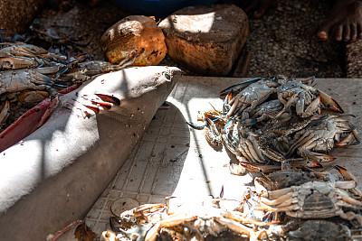 鲨鱼,木制,小龙虾,桌子,鱼市,动物主题,清新,海洋生命,螯虾,食品