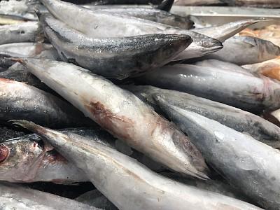 鱼类,冻结的,寒冷,牛排,清新,渔业,食品,鳕鱼,成分,三文鱼
