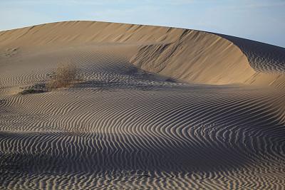 沙漠,沙顿海,沙丘,加利福尼亚,户外,沙子,泥土,自然,痕迹