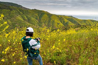 马里布,山脉,大学生,云,棒球帽,户外,仅女人,仅一个女人,草地