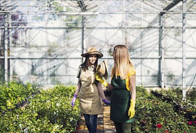 温室,青年女人,商业金融和工业,农场,兼职工作人员,植物,户外,园艺,仅女人,幸福