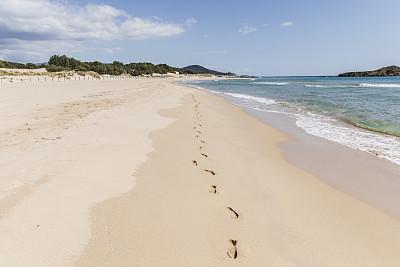 脚印,沙漠,海滩,热带气候,海浪,海岸线,波浪,自然荒野区,背景,地中海