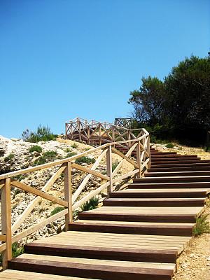 台阶,木制,无人,小路,赫罗纳省,垂直画幅,图像,海岸地形,楼梯,西班牙