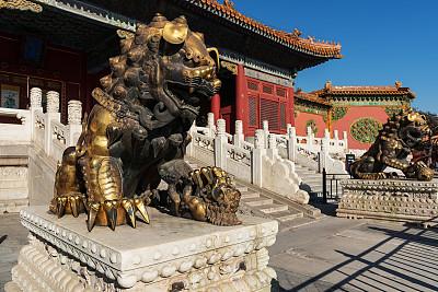 故宫,留白,古老的,动物身体部位,金属,狮子,国际著名景点,著名景点,铜
