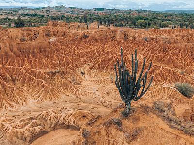沙漠,热,空的,环境保护,沙岩,仙人掌,逃避现实,自然美,自然荒野区,岩石