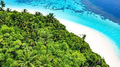 海洋,岛,鸡尾酒,热带气候,印度洋,无人机,植物,自然荒野区,热带树,户外