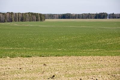 A rural, tranquil countryside farm scene in Województwo Malopolskie Poland, Europe.