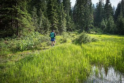 一个人,徒步旅行,山,草地,森林,湖,青年女人,成年的,仅成年人,青年人