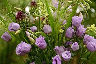 洋桔梗,花束,彩色背景,多样,枝繁叶茂,袋鼠爪花,夏天,户外,静物,满画幅