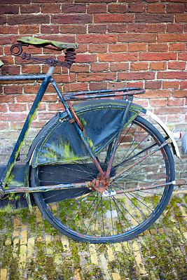 古典式,红色,荷兰,苔藓,阿姆斯特丹,砖墙,静止的,一个物体,彩色背景,砖