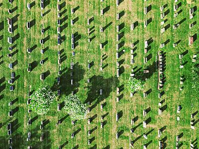 墓地,低视角,地形,户外,大量物体,十字形,绿色,古老的,成一排,记忆