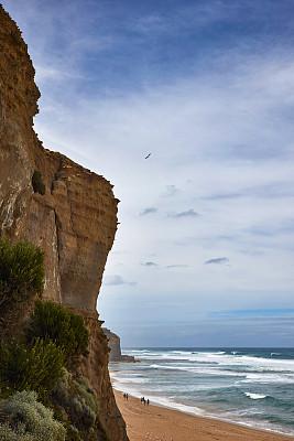 天体海滩,旅途,热,曙暮光,热带气候,云,林区,热带树,海滩度假,澳大利亚