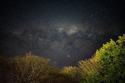 新西兰,银河系,灌木,在上面,深的,几何形状,环境,黄昏,天气,未来