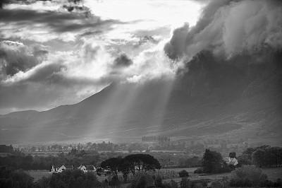 黑白图片,戏剧性的天空,赫曼努斯,早晨,农业,葡萄酒,黄昏,松树,梯田,葡萄酒厂