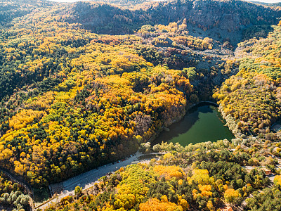 Aerial View Autumn Forest and Lake Yedig?ller