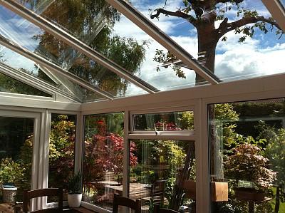 住宅内部,餐桌,木制,图像,玻璃,阳光房,黑色,摄像机拍摄角度,家庭花园,椅子