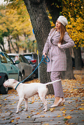 狗,女人,可爱的,商务,清新,自由,一个人,青年女人,动物,仅一个青年女人