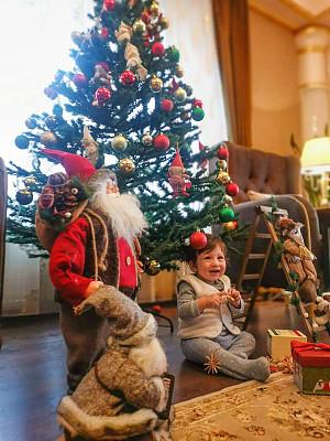 圣诞树,起居室,男婴,圣诞装饰物,土耳其,肖像,住宅内部,圣诞小彩灯,嬉戏的,幸福