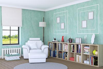 角落,土耳其,舒服,地板,图书馆,简单,椅子,现代,住宅内部,植物