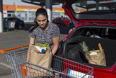 购物车,纸袋,食品杂货,青年女人,蔬菜,城市生活,汽车,食品,津贴,一个人