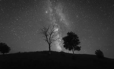 背景,夜晚,银河系,深的,纹理效果,暗色,灵感,草,自然美,死亡的植物