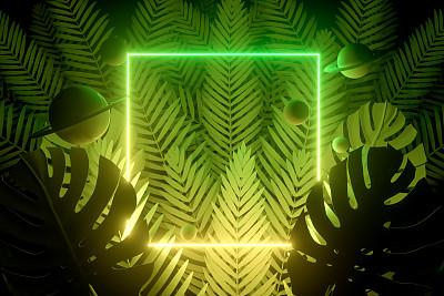 边框,无人,夏天,霓虹灯,三维图形,背景,棕榈树,概念