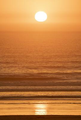 2020,珊瑚色,热带气候,橙色,黄昏,色彩鲜艳,摩洛哥,色彩饱和,波浪,植物