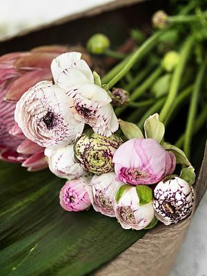花束,粉色,毛茛属植物,普罗梯亚木,毛莨属植物,花,土耳其,插花,花