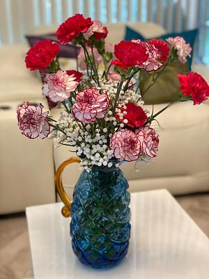 康乃馨,花瓶,水香花菜,清新,浪漫,杂色的,爱,排列,插花,花