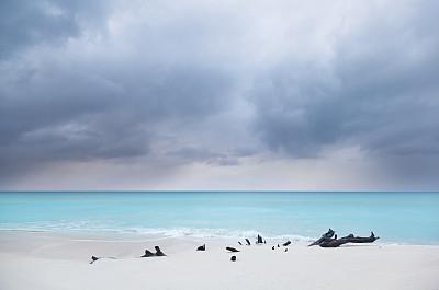 暴风雨,海滩,加勒比海地区,暗色,背风群岛,安提瓜和巴布达,安提瓜,灰色,浮木,云