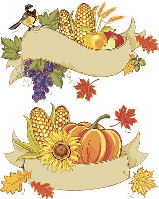 秋天,农作物,缎带,山雀,收获节,甜玉米,背景分离,熟的,设计元素,矢量