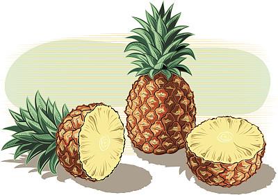菠萝,白色背景,背景分离,黄色,矢量,饮食,生食,食品,素食,水果