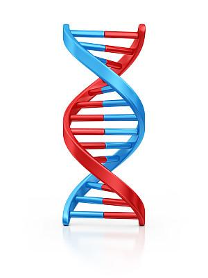 脱氧核糖核酸,螺旋模型,螺旋,生物学,健康保健,螺线,背景分离,转基因,一个物体,生物科技