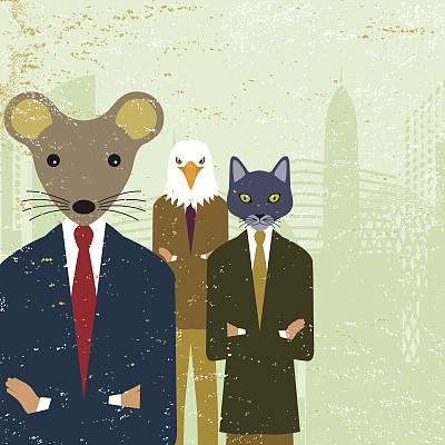 动物,鼠,首席执行官,猫,鹰,商务,经理,人,团队,概念和主题