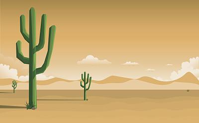 沙漠,矢量,仙人掌,图像,拉丁美洲,绘画插图,太阳,植物,日落,剪影