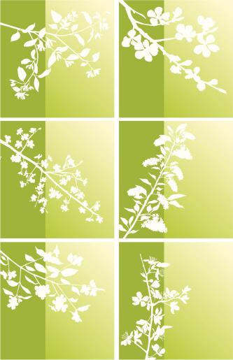枝,春天,自然紋理,圖標集,季節,花蕾,標簽,設計元素,葉狀圖案,布置