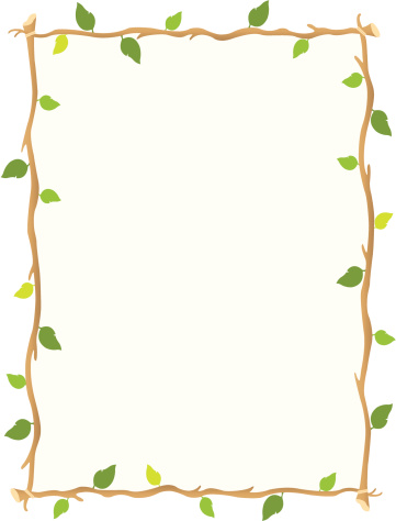 森林,边框,自然,绿色,枝,叶子,树林,热带雨林,背景,摄影